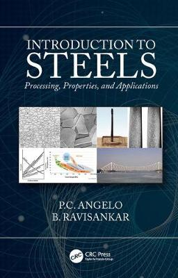 Introduction to Steels: Processing, Properties, and Applications by P.C. Angelo
