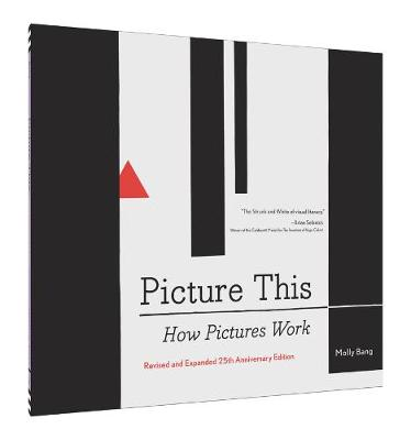 Picture This 25th Anniversary Edition by Molly Bang