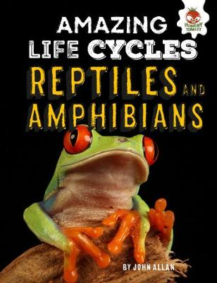 Reptiles and Amphibians - Amazing Life Cycles by John Allan