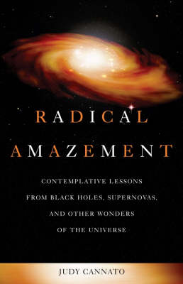 Radical Amazement by Judy Cannato