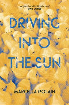 Driving into the Sun by Marcella Polain