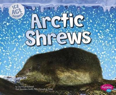 Arctic Shrews by Joy Frisch-Schmoll
