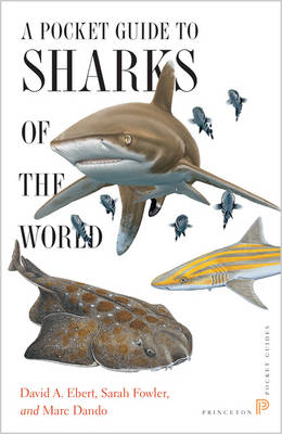A Pocket Guide to Sharks of the World by David A. Ebert